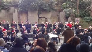 クリスマスコンサート2014INそごう♪犢橋高校さんと合同演奏